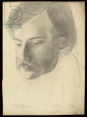 portrait - Stevens
